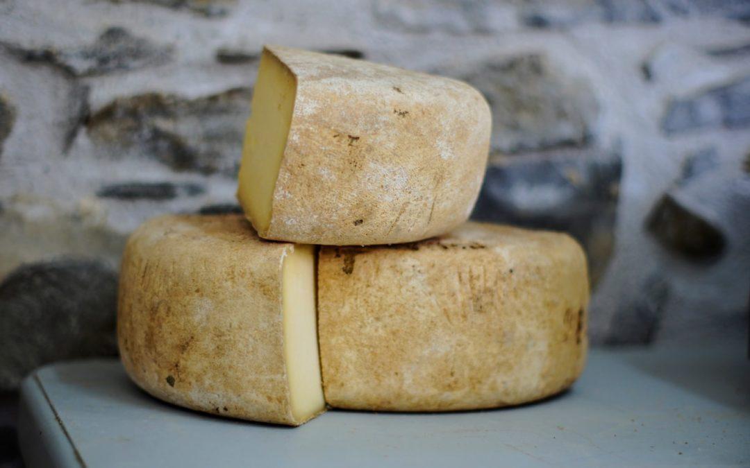 7# Qui a piqué mon fromage ou comment s'adapter au changement ?